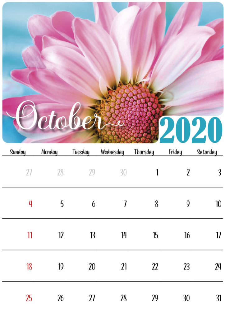 floral calendar 2020 october
